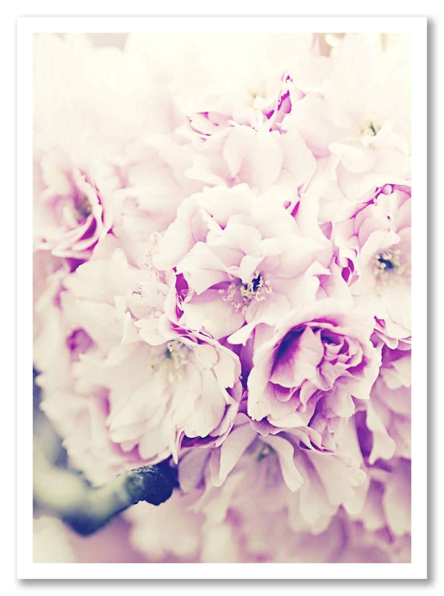 Fleurs - Bouquet de Roses