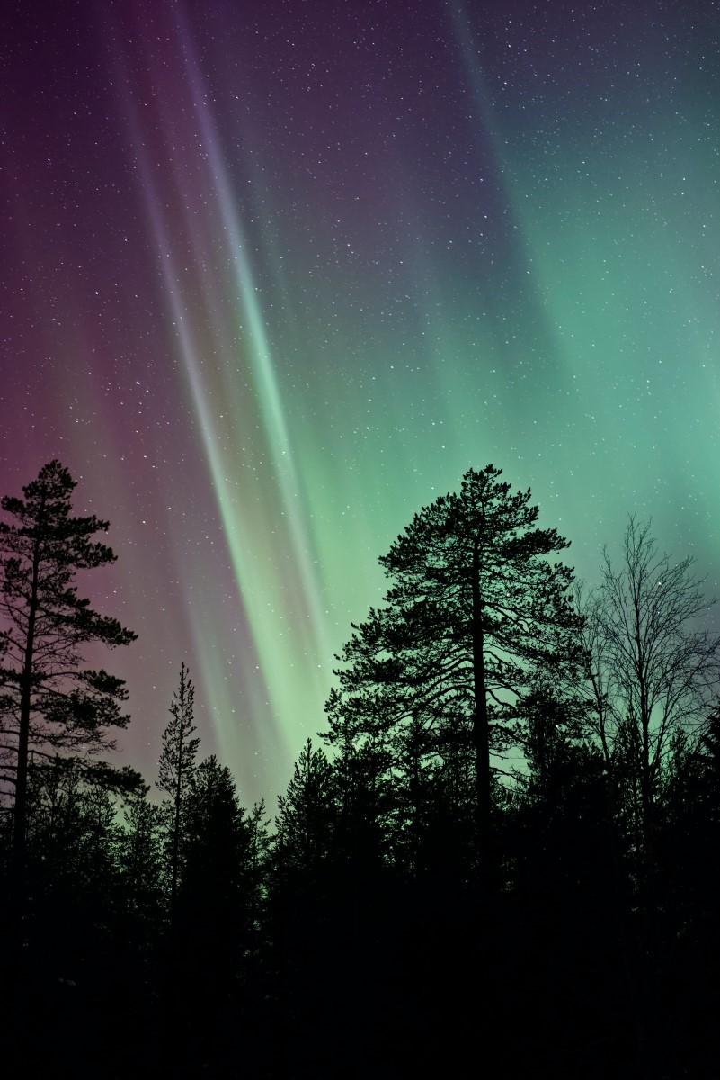 Nature - Ciel nordique