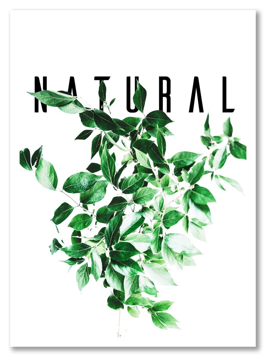 Nature - Natural
