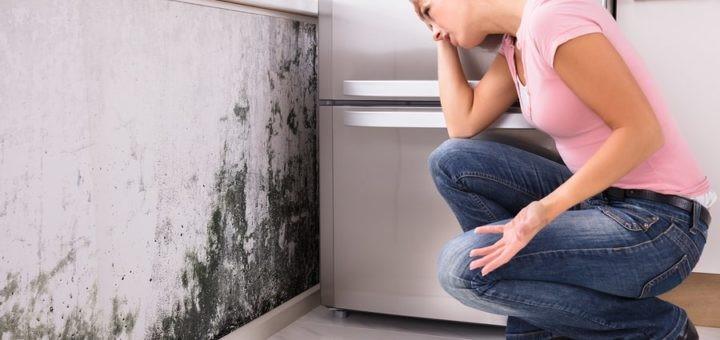 Que faire pour détecter une infiltration d'eau dans un mur?