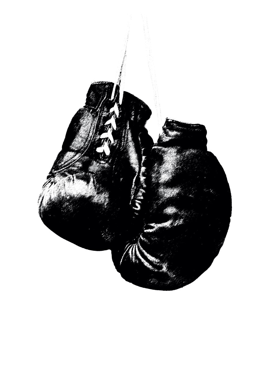 Sports - Gants de Boxe