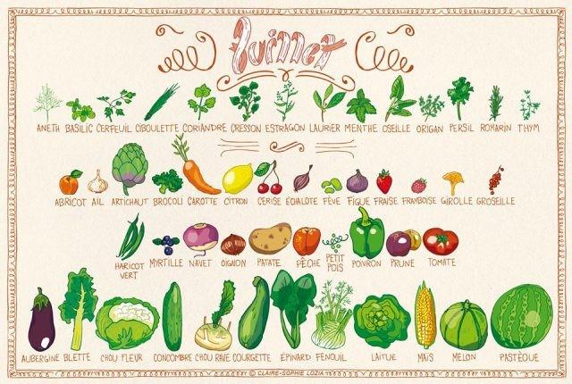 Les fruits & légumes de saison du mois de juillet