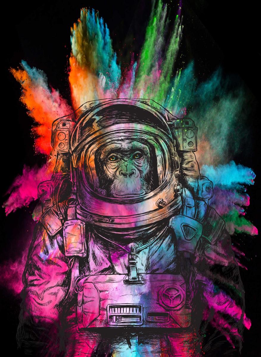 Street Art - Singe Astronaute