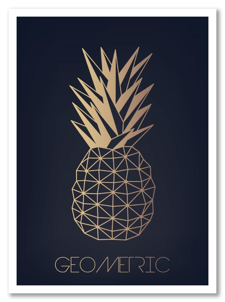 Ananas - Geometric