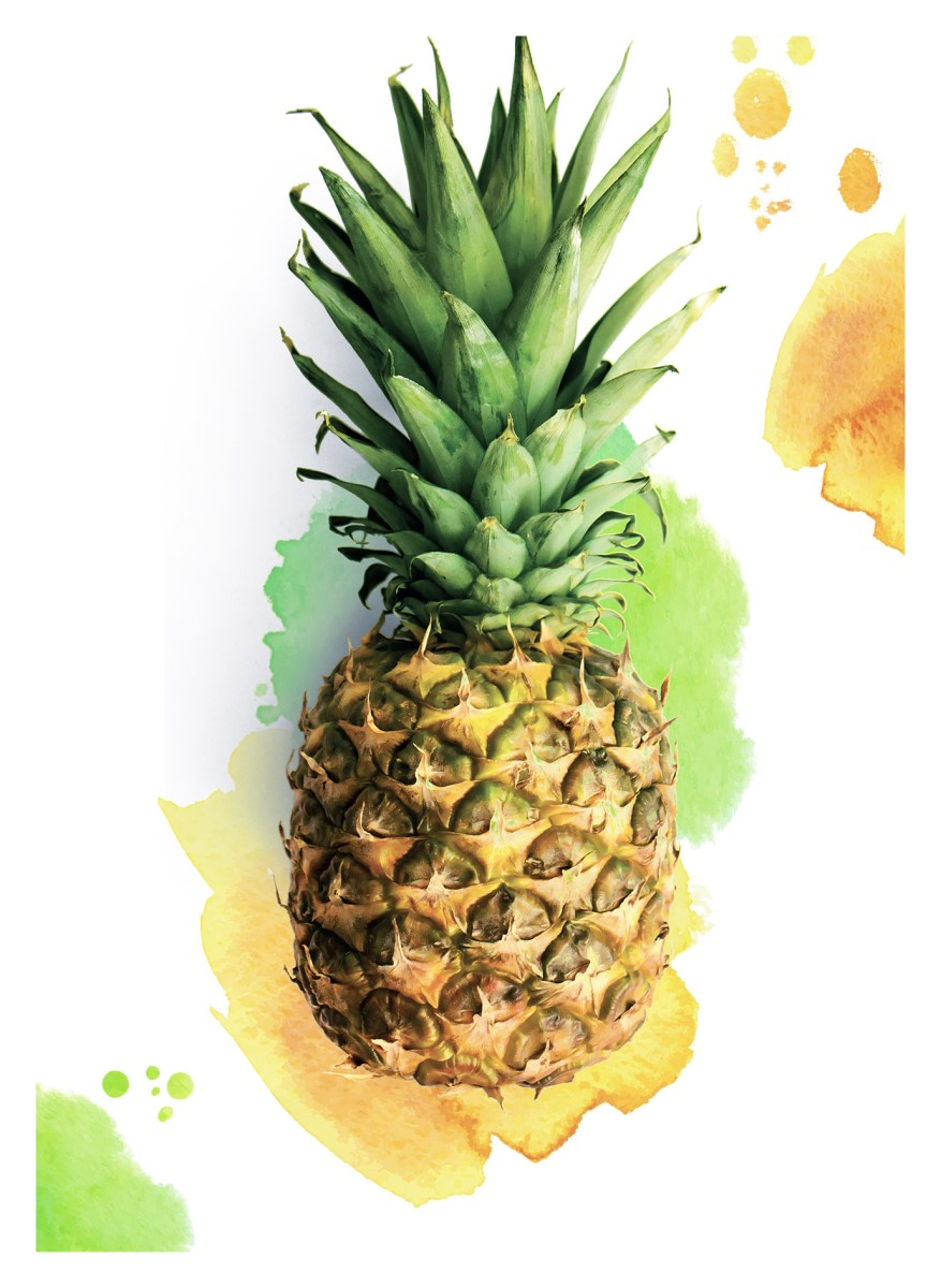Nature - Ananas couleur