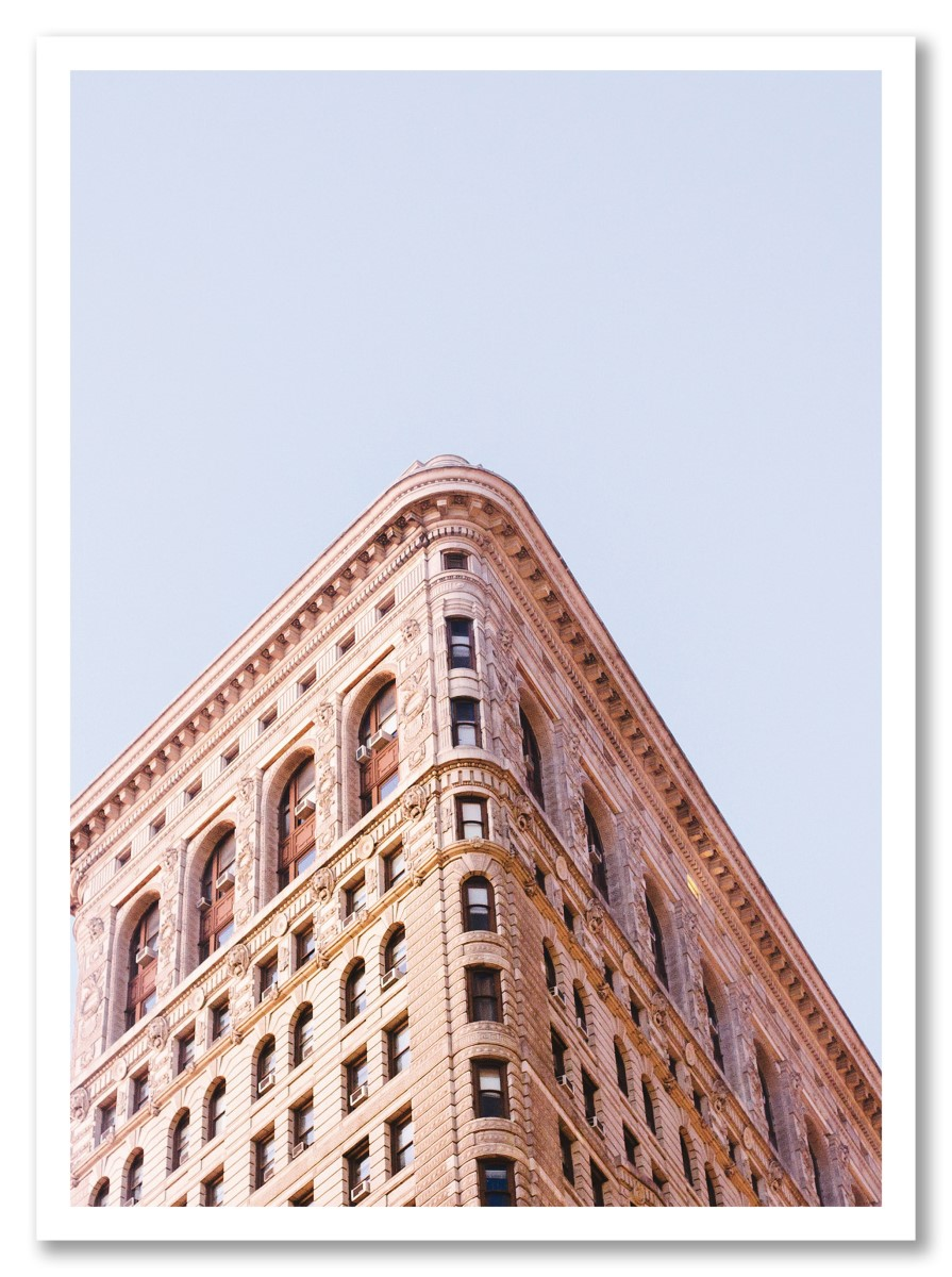 Architecture - Flatiron Building Rose
