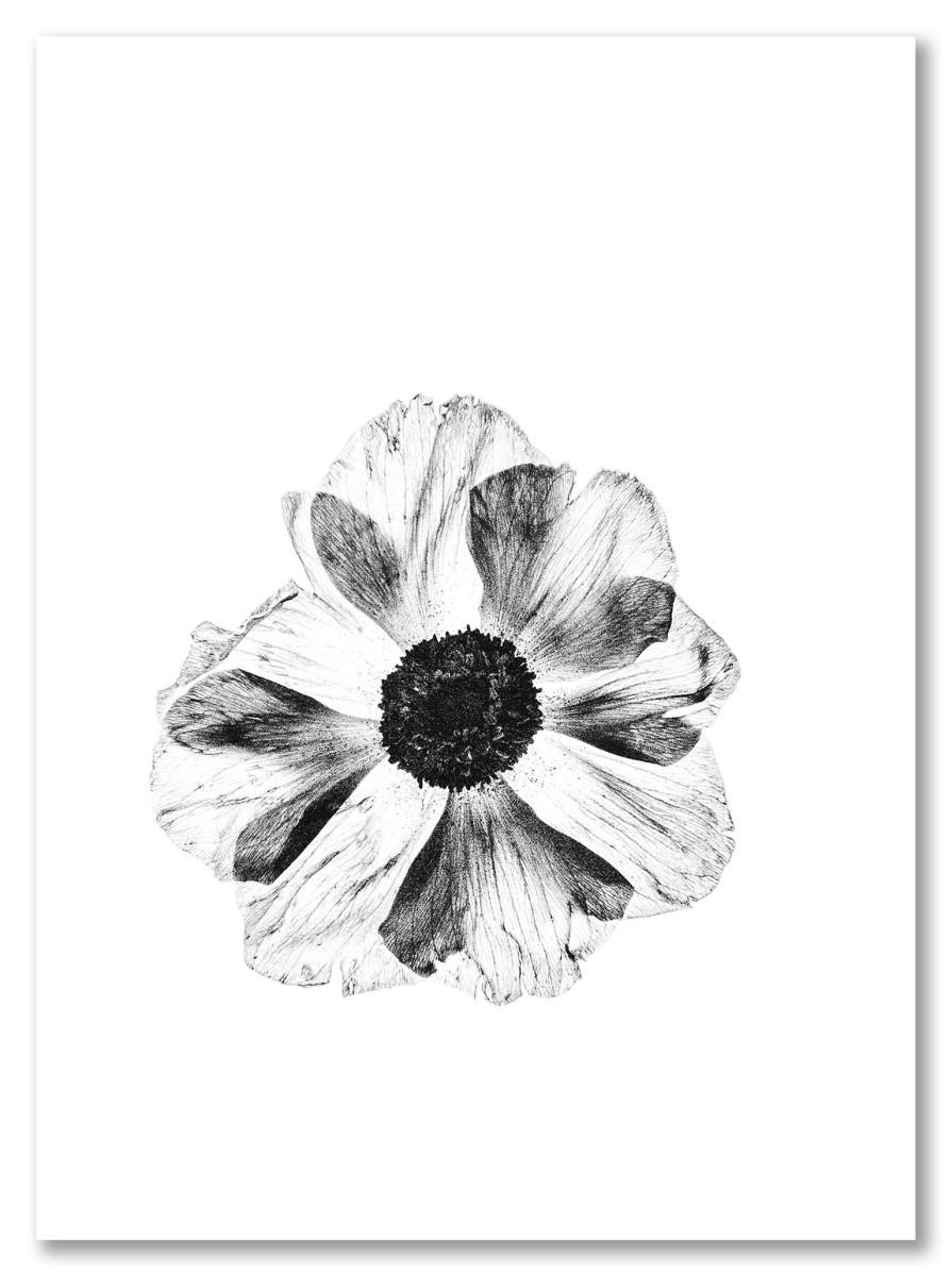 Séjour moderne - Fleur