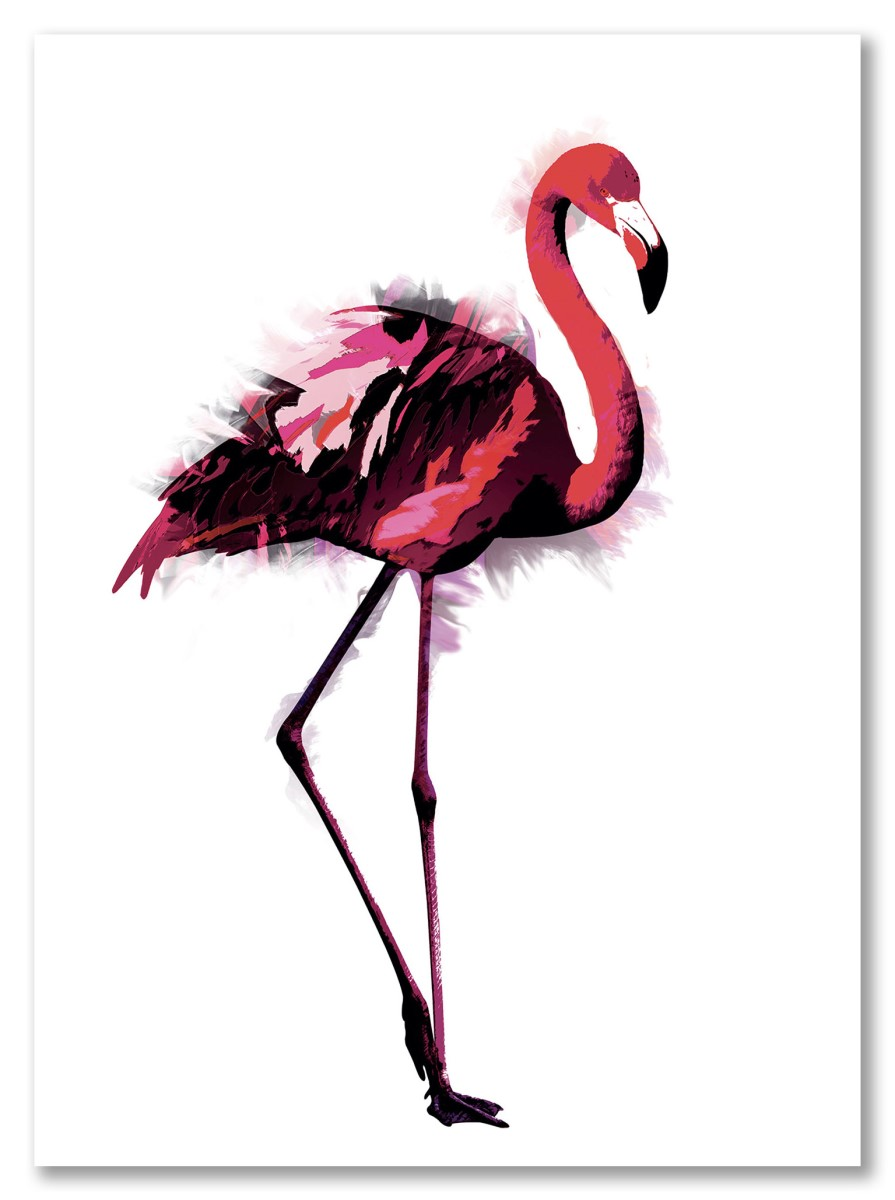 Toilettes - Flamant rose
