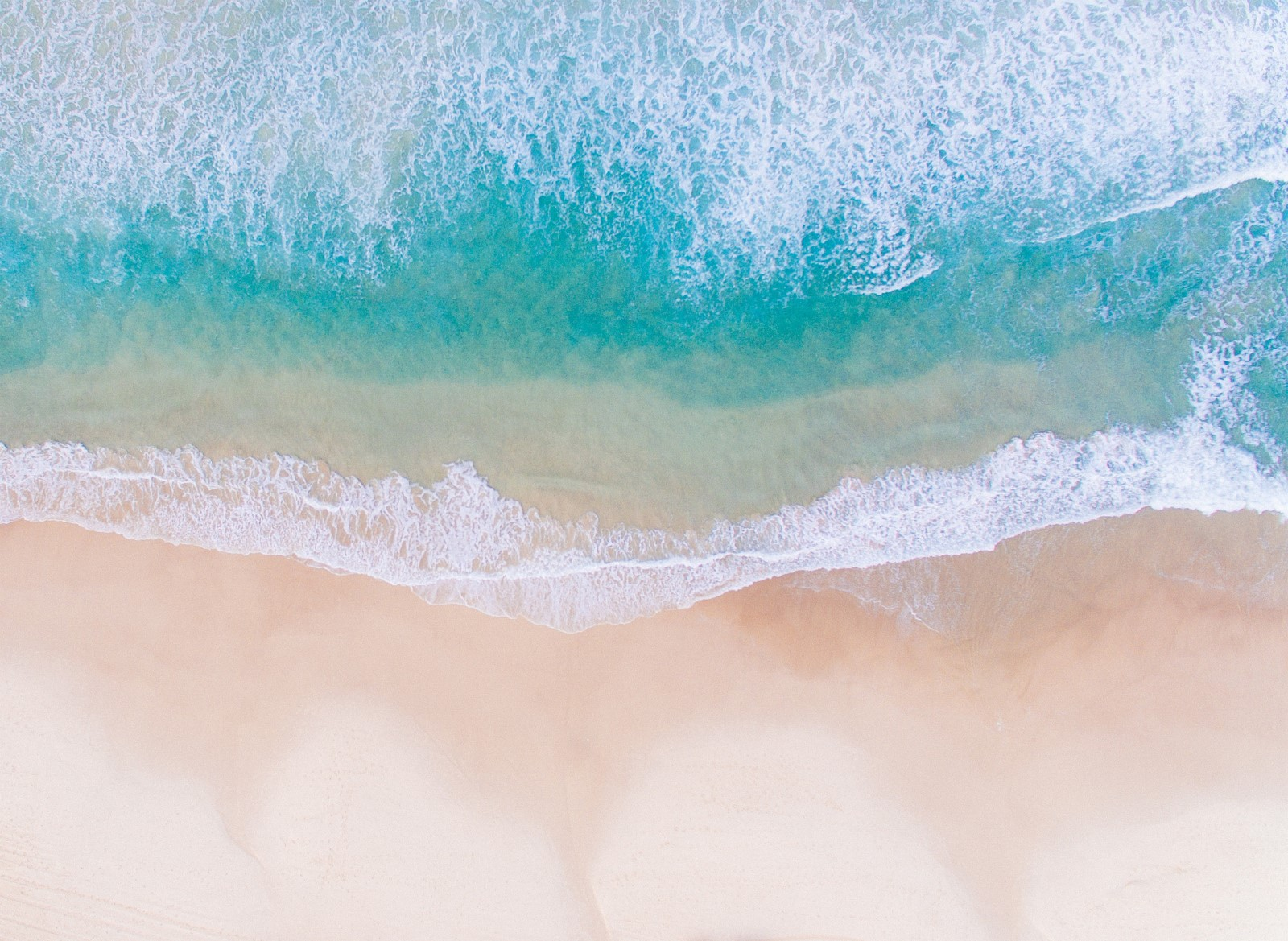 Nature - Bondi Beach, Australie