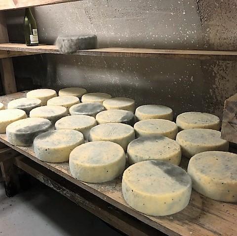 Tome des bruyères frottée au Beaujolais