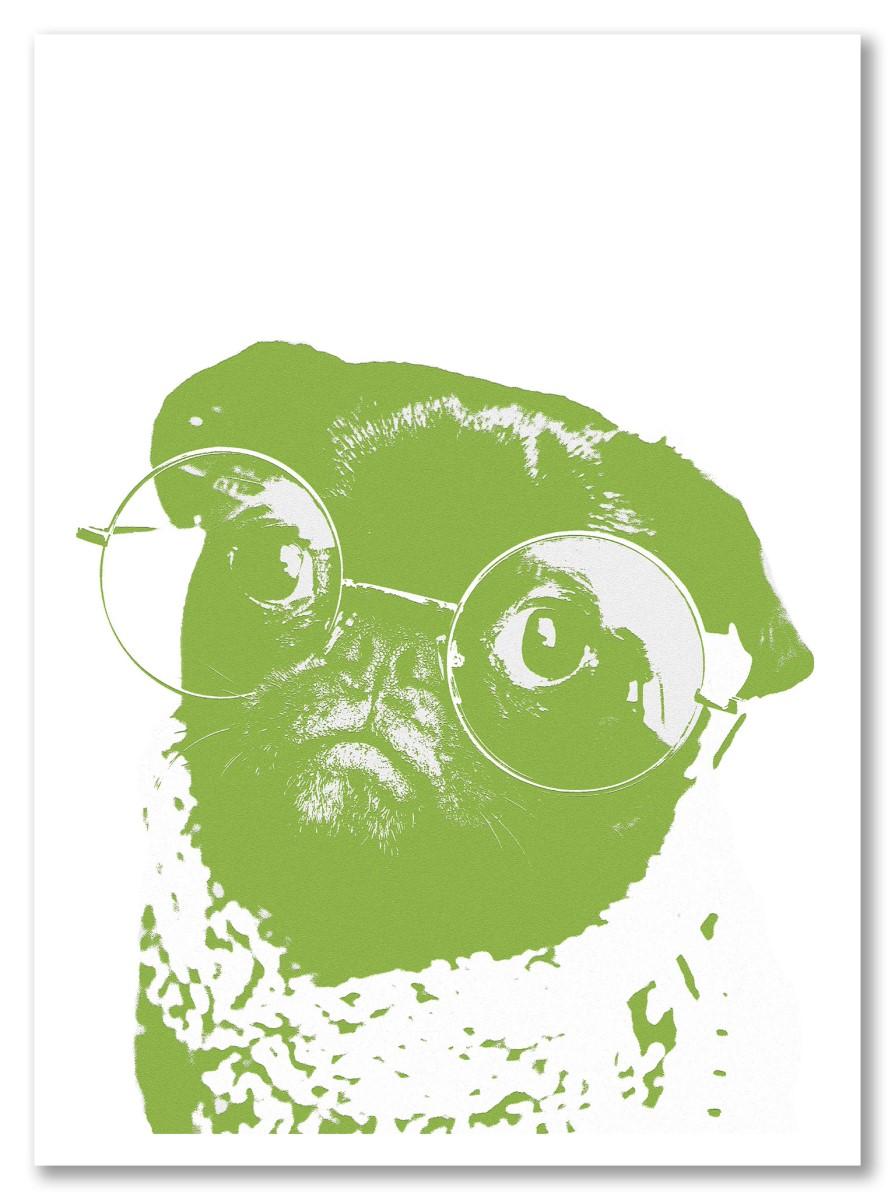 Animaux - Bulldog vert