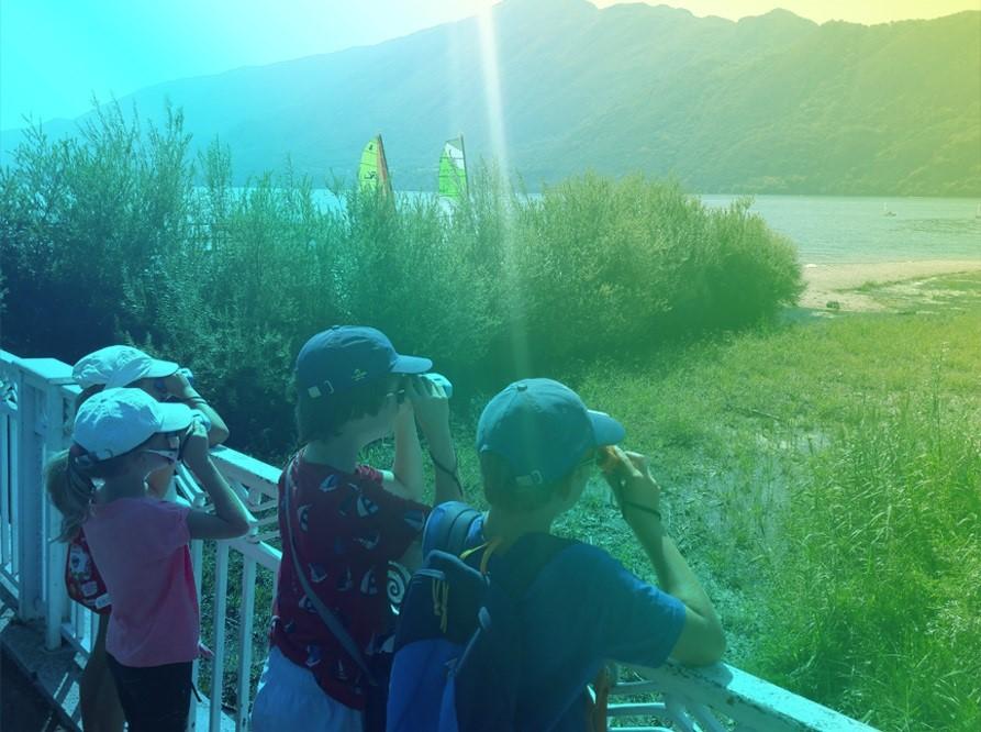 aqualis - Depuis les rives du lac