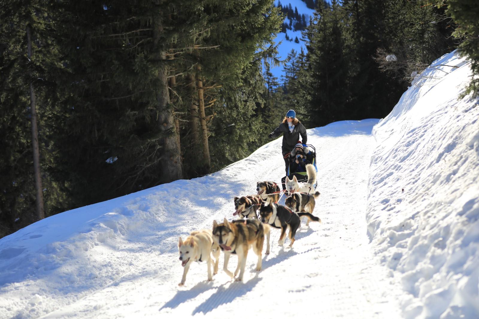 Escapades Nordiques - OT Valmorel