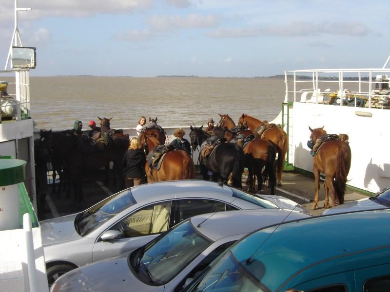 Passage du bac avec les chevaux à Blaye|Evazio