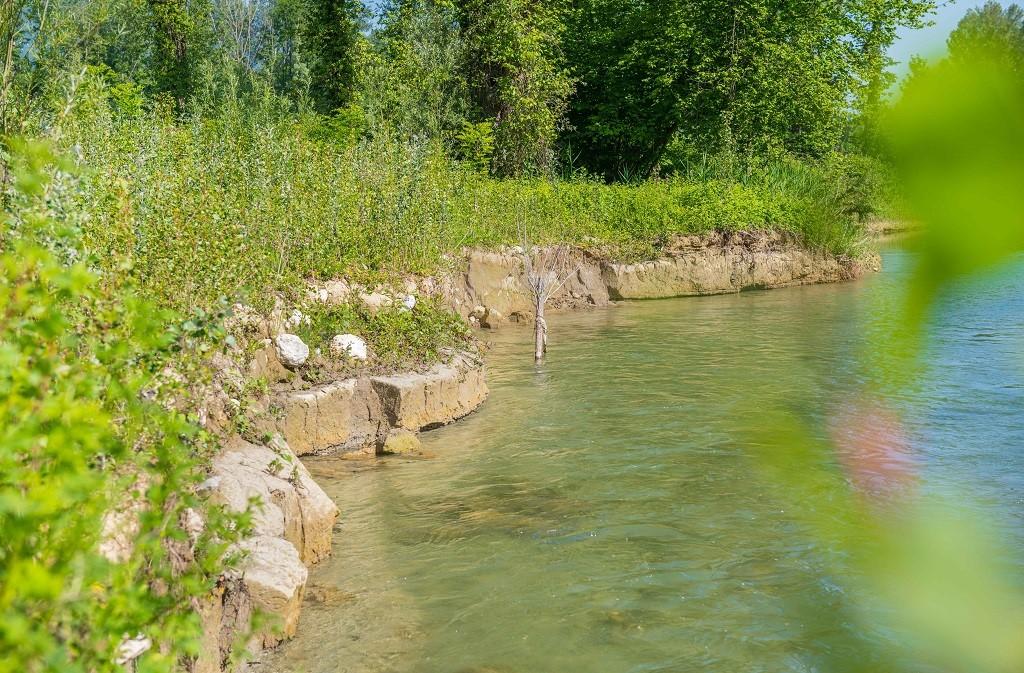 Erosion de la berge d'argile