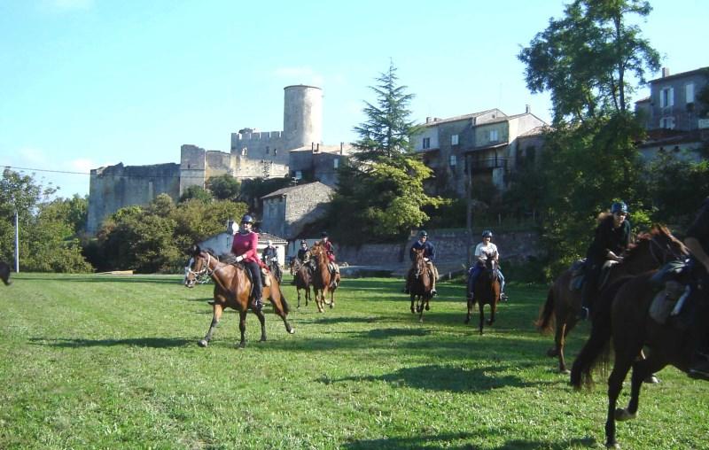 Horse at the Château de Biron|Evazio