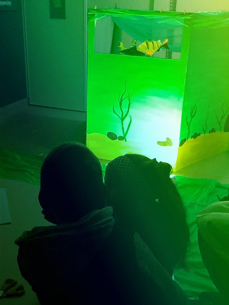 ©Aqualis - découvrir le monde du plancton