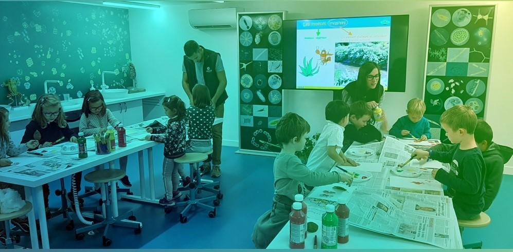aqualis - des ateliers créatifs pour apprendre autrement