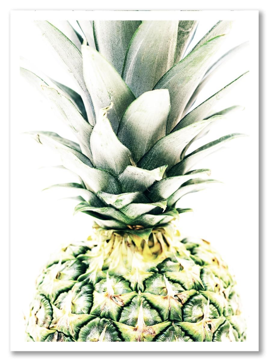 Ananas - Face