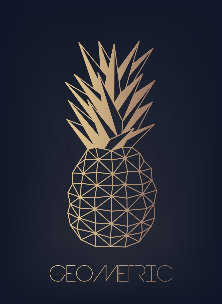 Nature - Ananas geometric
