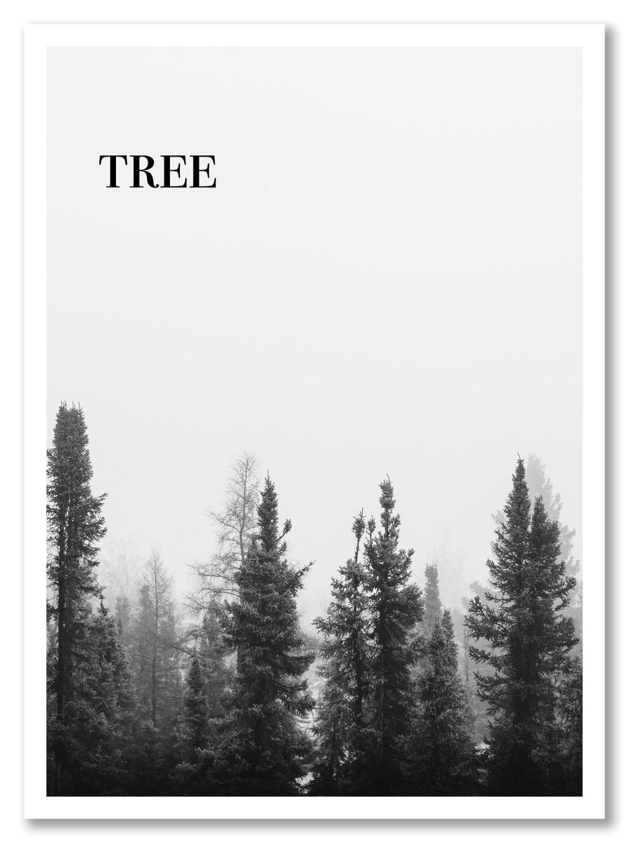 Affiche Arbre Tree