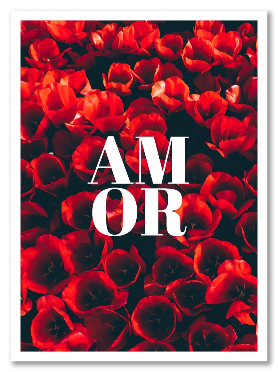 Fleurs - Amor