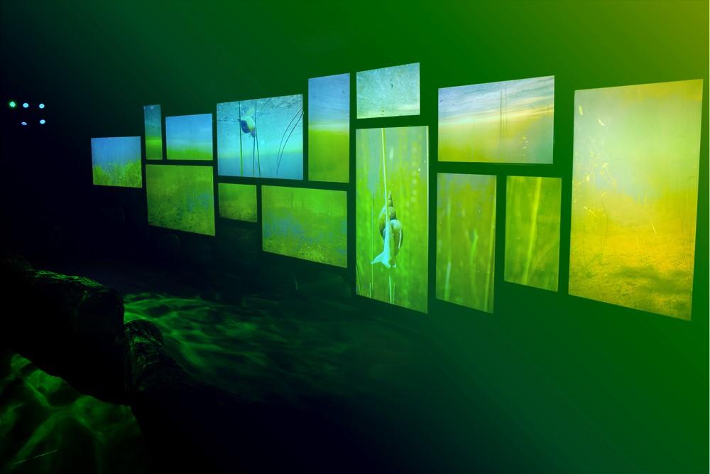 aqualis - espace