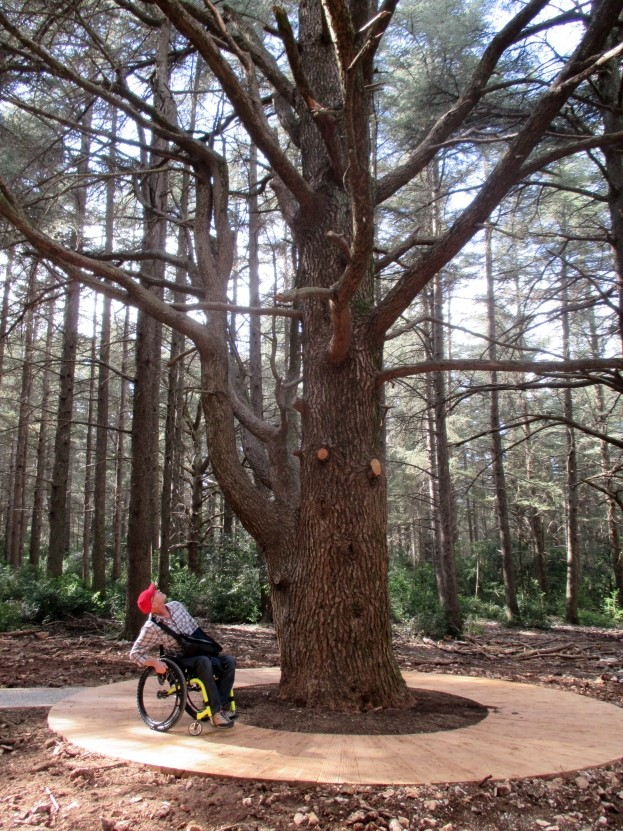 Parc Naturel Luberon