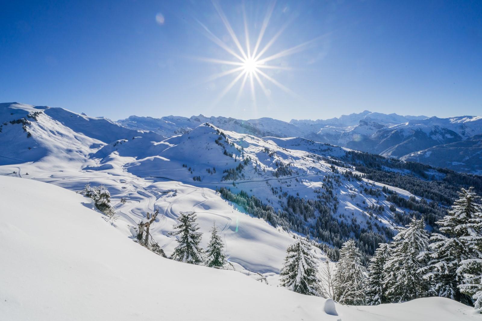 Panorama du Mont-Blanc - OT les Gets