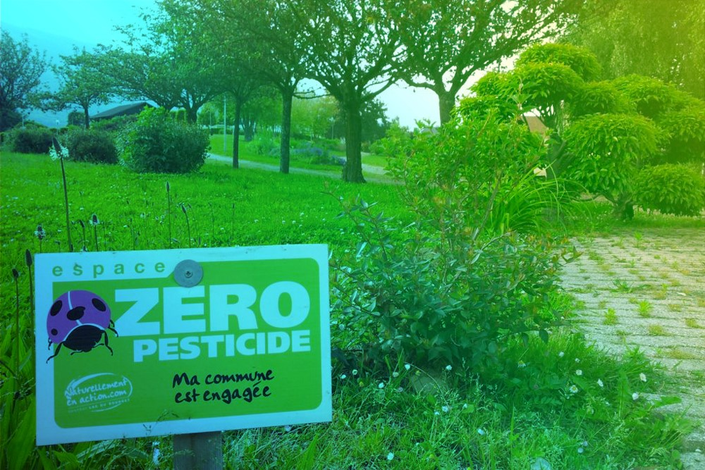 Les pesticides et le lac